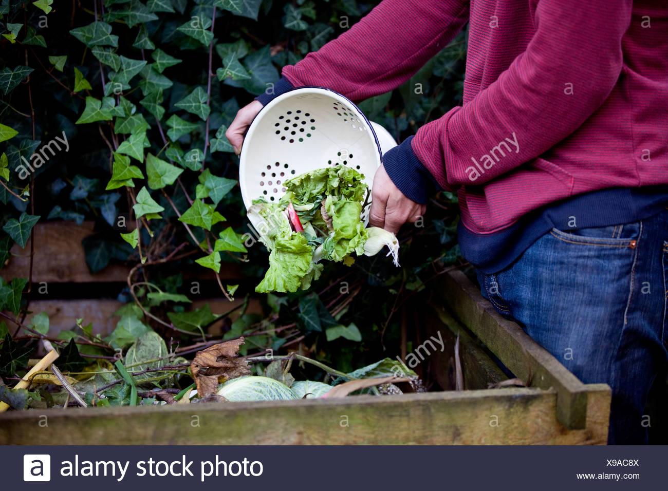 Un hombre vaciando cáscaras vegetales en un montón del abono Imagen De Stock