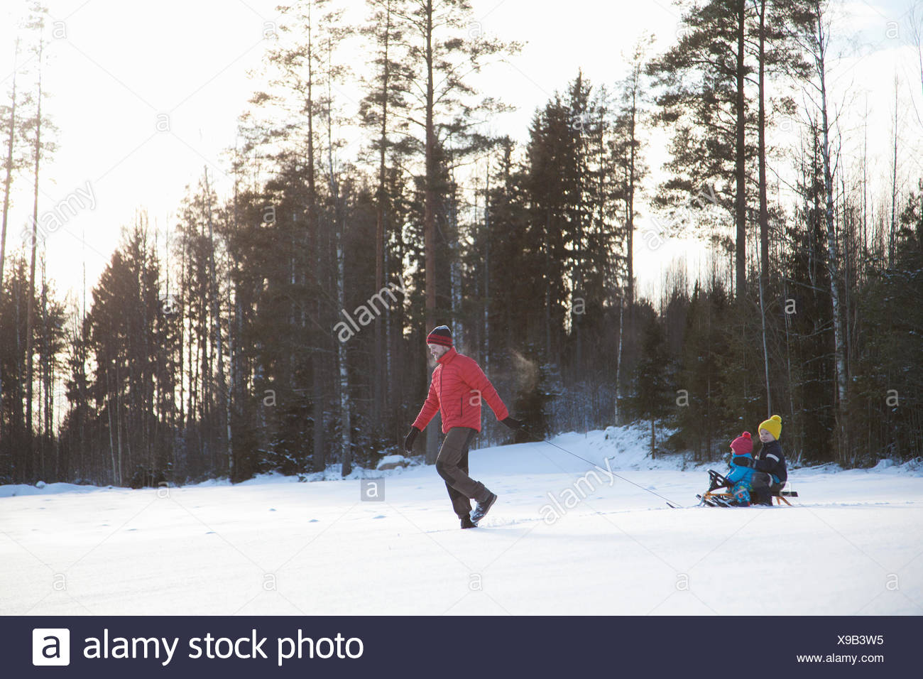 Padre tirando hijos junto en trineo en el paisaje cubierto de nieve Imagen De Stock