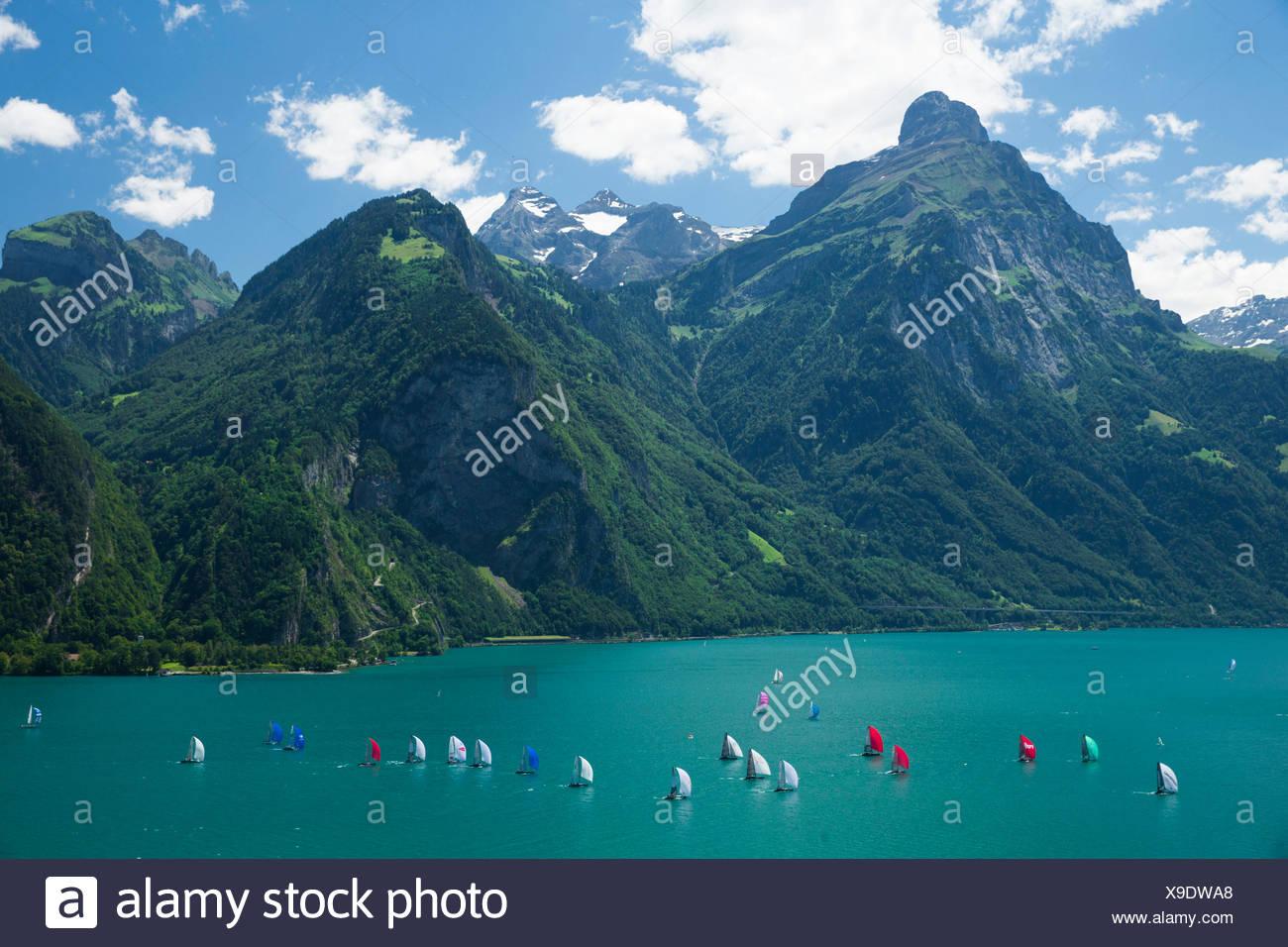 El lago de Uri, yachting, regata, Vierwaldstättersee, Lago de Lucerna, vela, vela, deportes acuáticos, Suiza, Europa, Imagen De Stock
