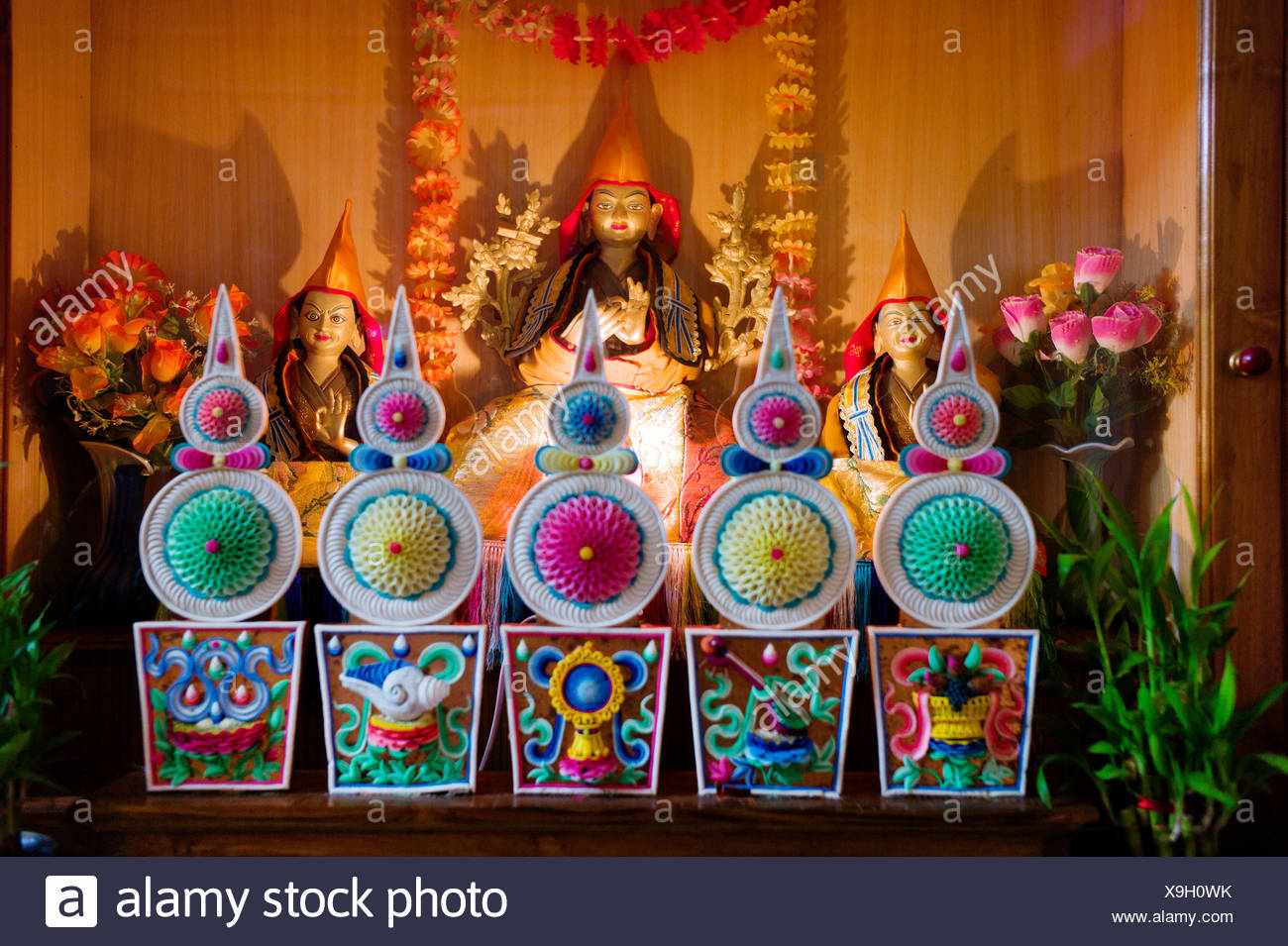 Buda, el monasterio budista tibetano de Gaden Shartse, India, Asia, cultura, religión, simbolos, simbologia religiosa, el templo, campo Foto de stock