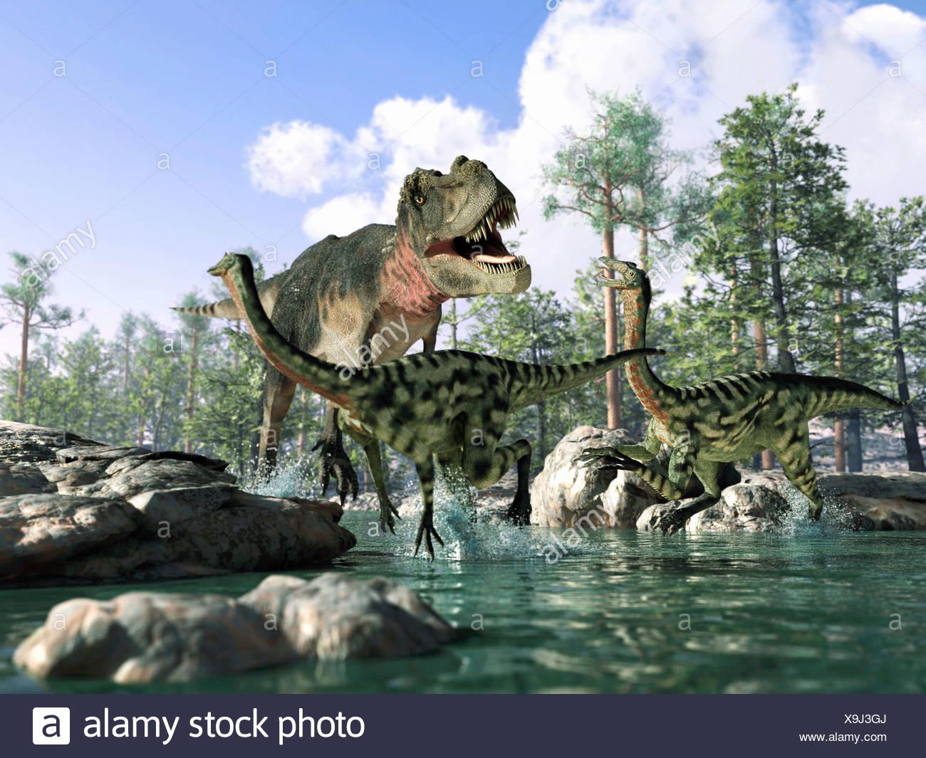 T Rex Tyrannosaurus rex dinosaurio Gallimimus cazar dinosaurios Imagen De Stock