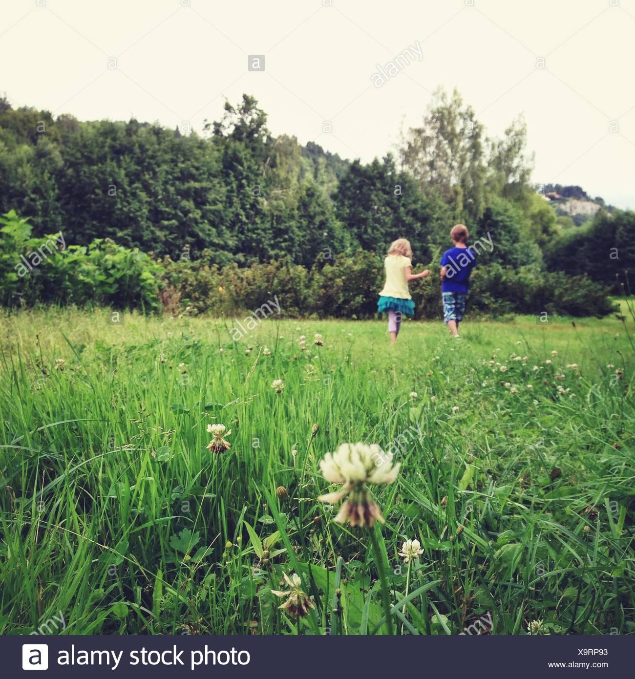Chico y chica (10-11, 12-13) caminar sobre la pradera Foto de stock