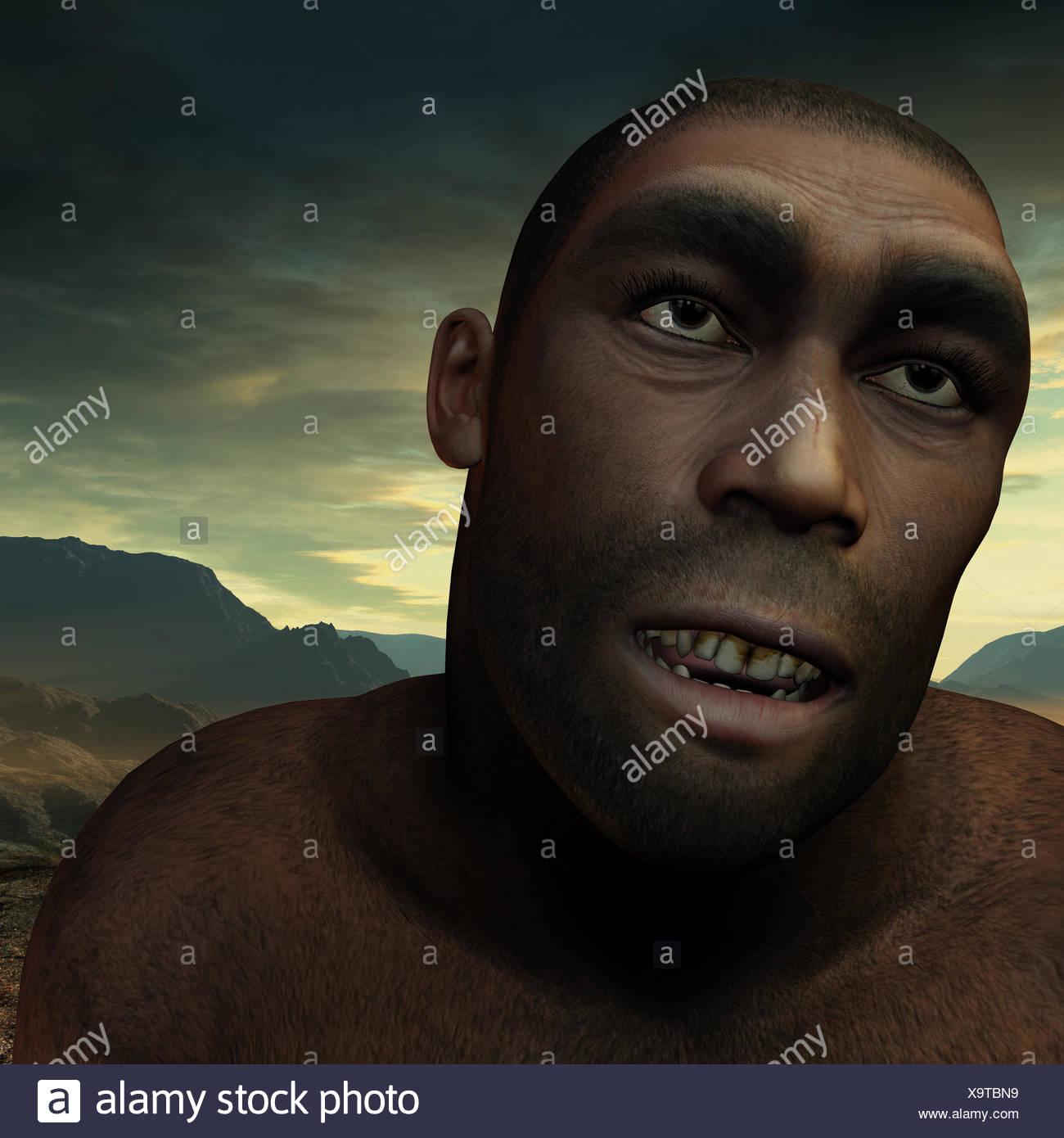 Los primeros seres humanos Homo erectus Imagen De Stock