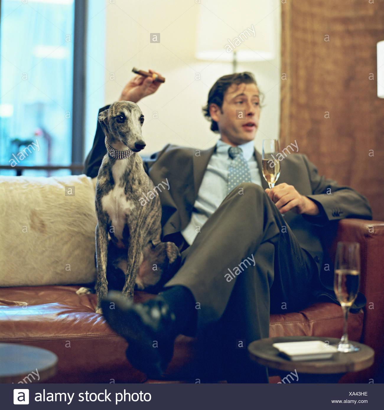 """Expresa tu momento """" in situ """" con una imagen - Página 39 Salon-sofa-hombre-cigarros-humo-copa-de-champana-el-perro-el-whippet-salon-sala-de-fumadores-lujo-snob-exclusivamente-lujosamente-vidas-de-lujo-riqueza-copa-de-champana-champagne-vino-espumoso-mamiferos-greyhound-mascota-perro-perro-acompanante-anima-xa43he"""