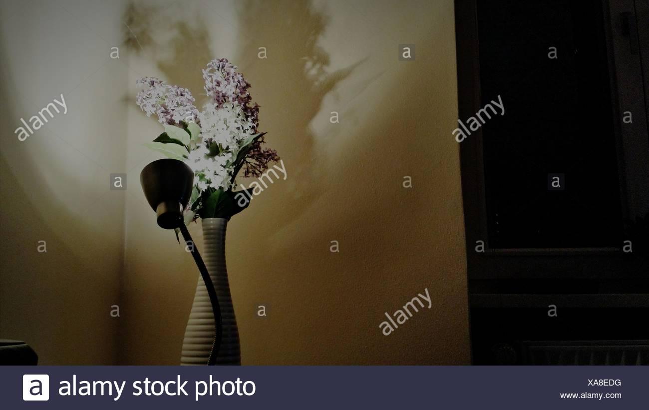 Ángulo de visión baja de luz eléctrica y floreros en casa Imagen De Stock