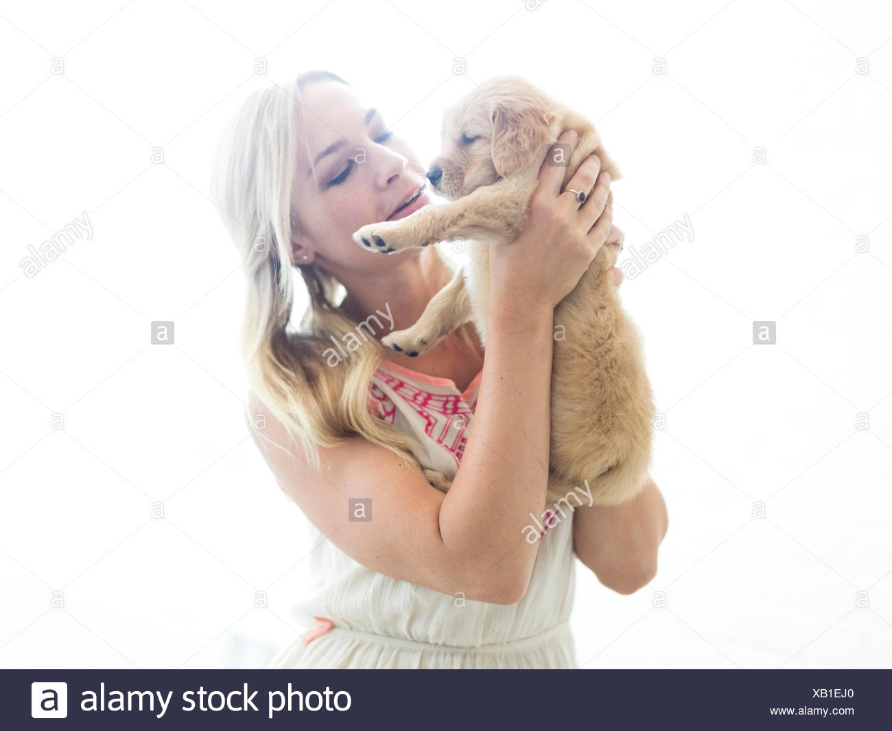 Foto de estudio de Golden Retriever cachorro con el propietario Imagen De Stock