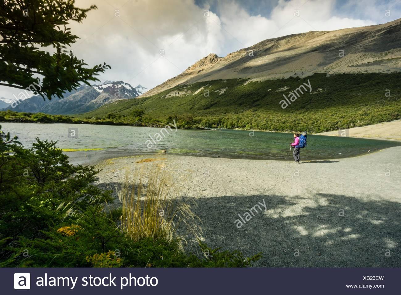 Senda de las lagunas Madre e hija, el parque nacional Los Glaciares, Republica Argentina, Patagonia, cono sur, América del Sur. Imagen De Stock