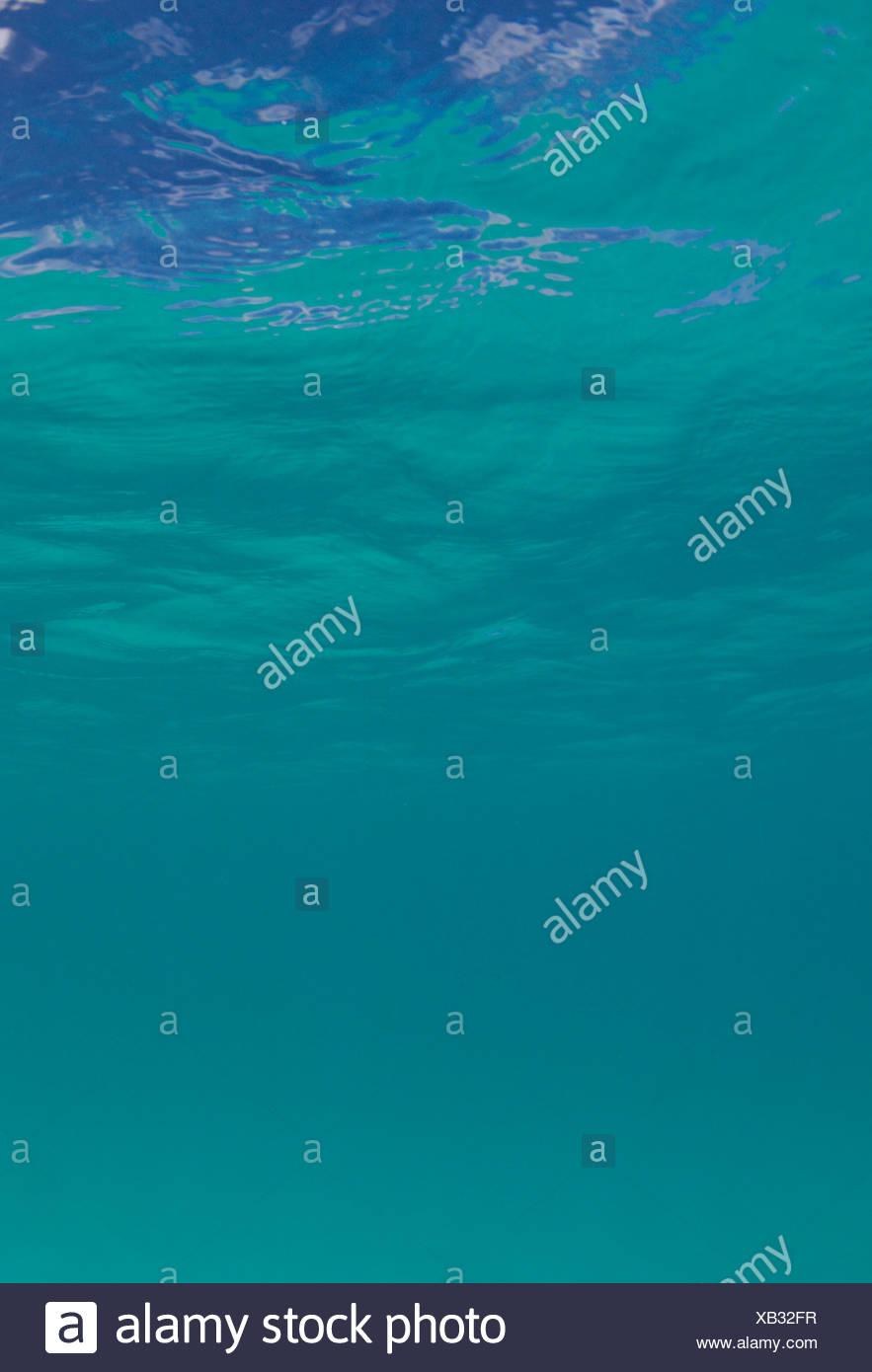 WaterSurface Maui Hawaii PACÍFICO EE.UU. Imagen De Stock