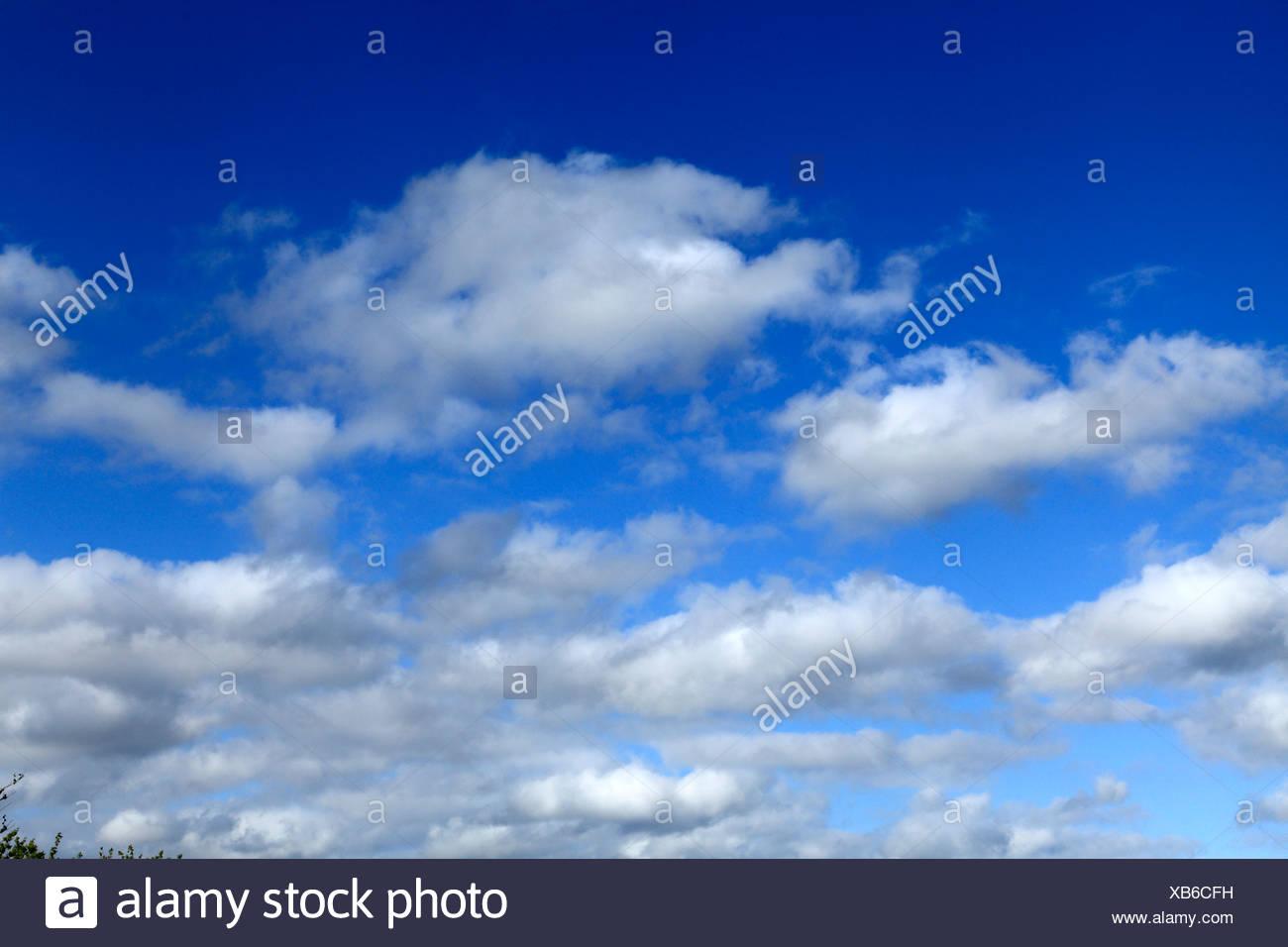 Nubes cumulus, cielo azul cielo nuboso UK Imagen De Stock