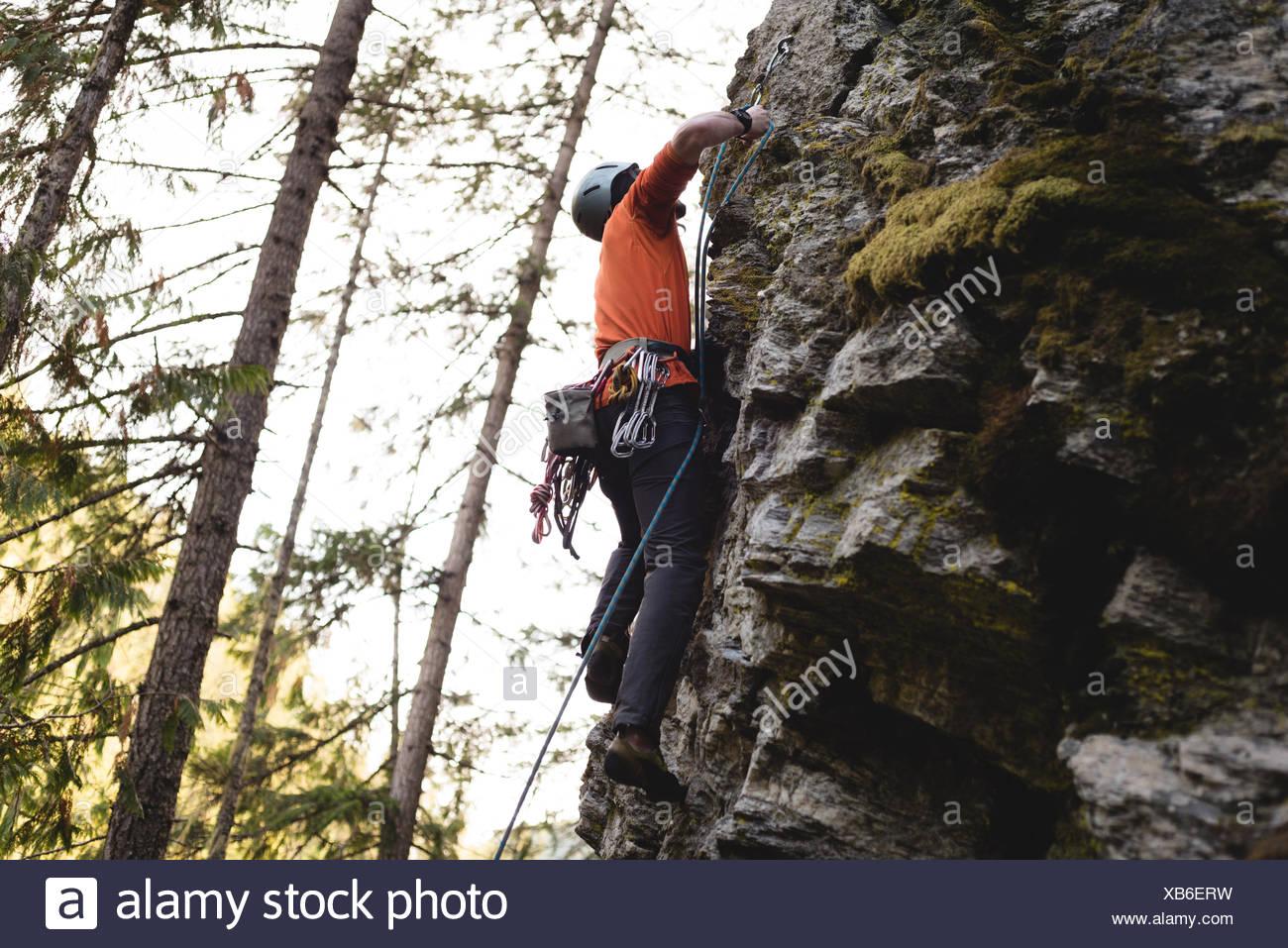 Escalador escalando el acantilado rocoso Imagen De Stock