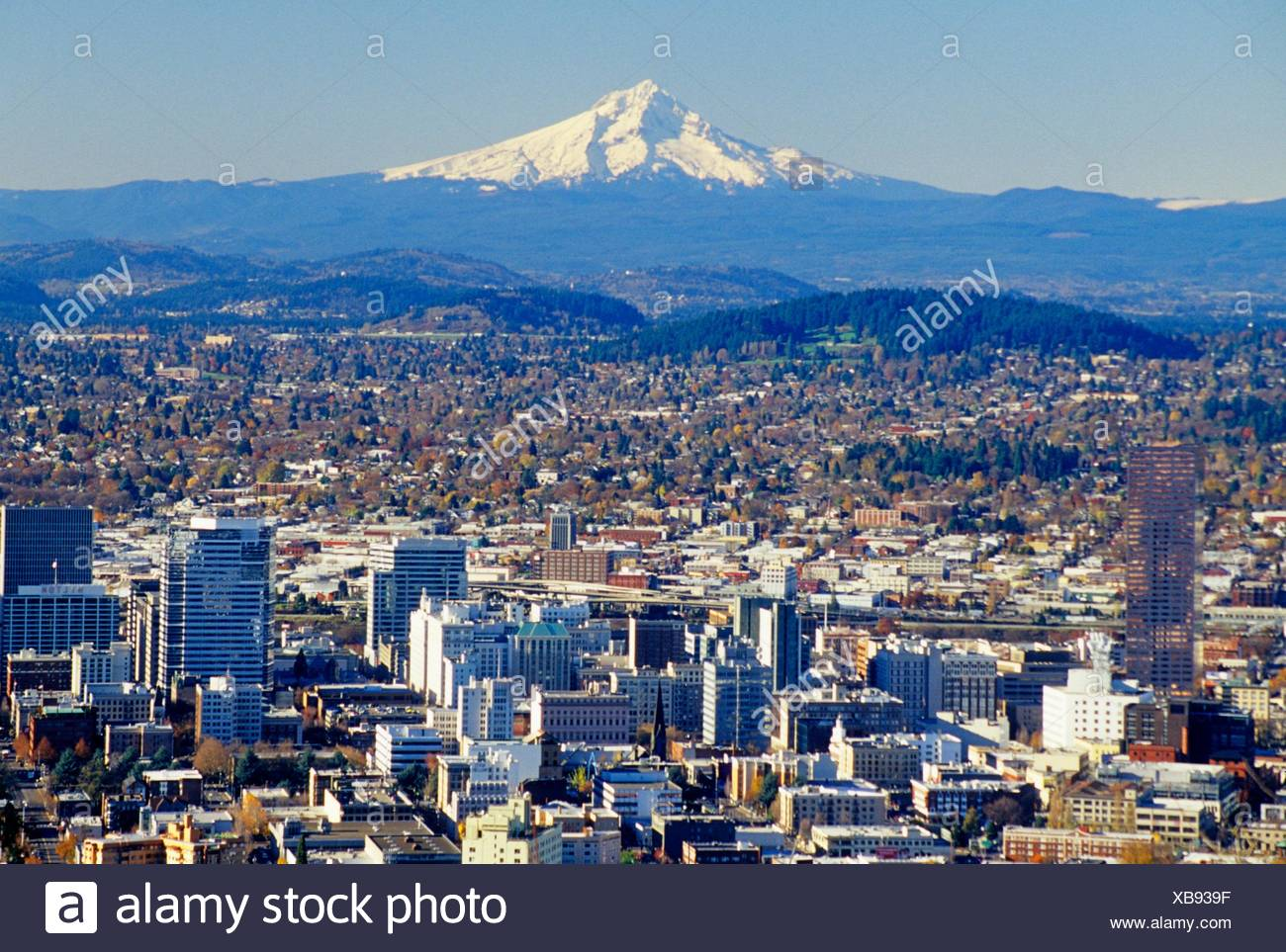 Centro de vista con Mt Hood de mansión Pittock, Portland, Oregon. Imagen De Stock