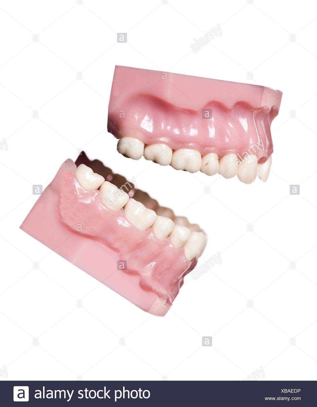 Dentaduras antiguos aislados obsoleto el rechinar de dientes humanos ...