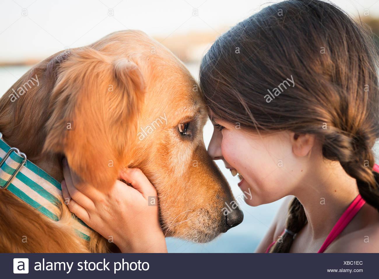 Una niña y un perro golden retriever de nariz a nariz. Imagen De Stock