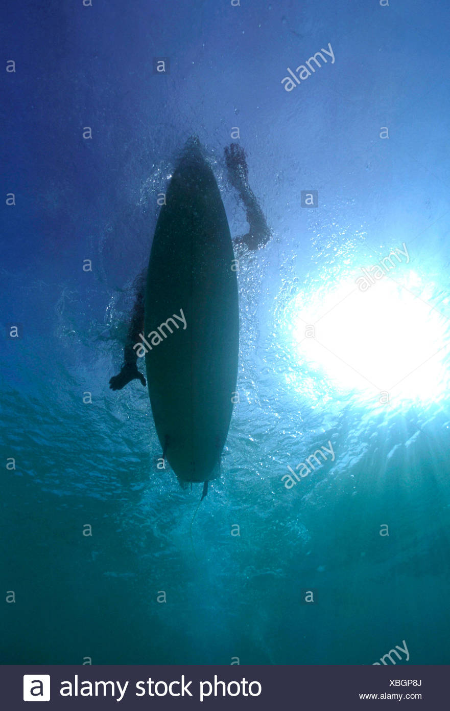 Ángulo de visión baja de una persona navegando en el mar Foto de stock