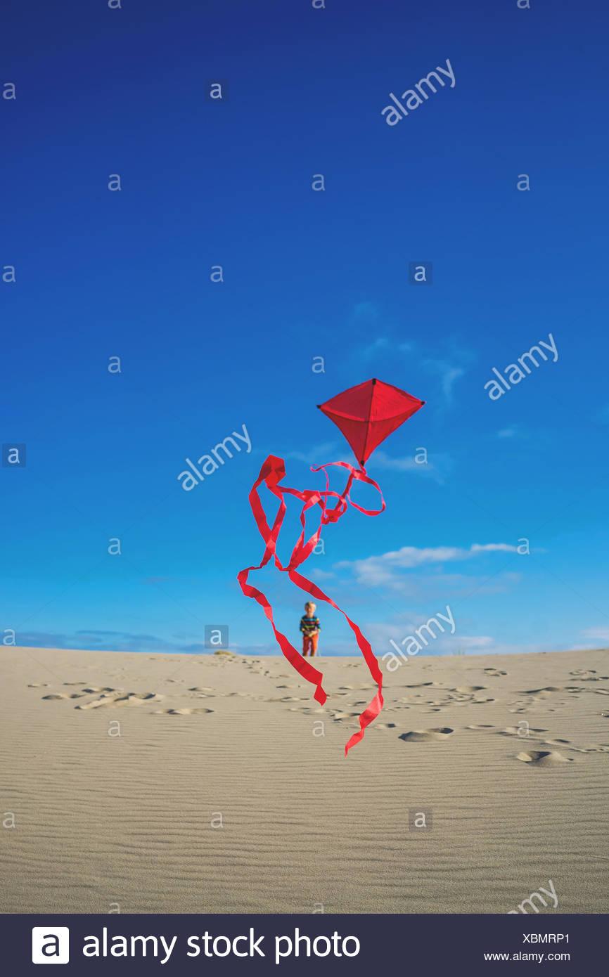 Niño volando red kite en la playa de arena Imagen De Stock