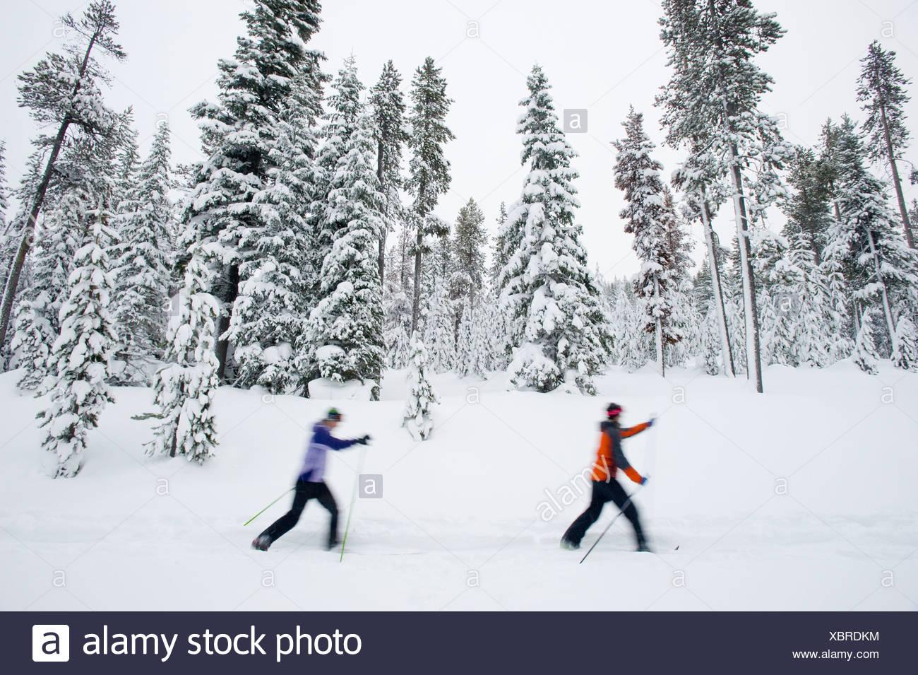 Dos jóvenes mujeres de esquí de fondo en un sendero en la nieve en Bend, Oregon (movimiento borrosa). Imagen De Stock