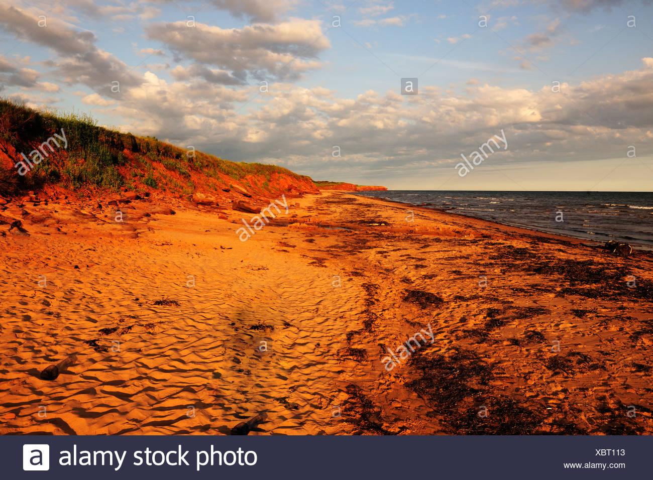 Playas y acantilados de arenisca roja, típico de la costa de Prince Edward Island National Park, Prince Edward Island, Canadá Imagen De Stock
