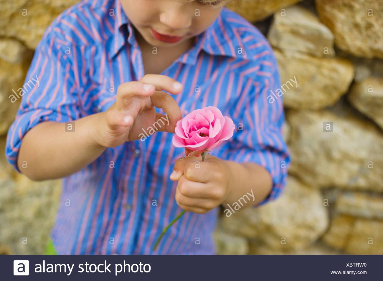Un niño recogiendo petalos fuera una flor Imagen De Stock
