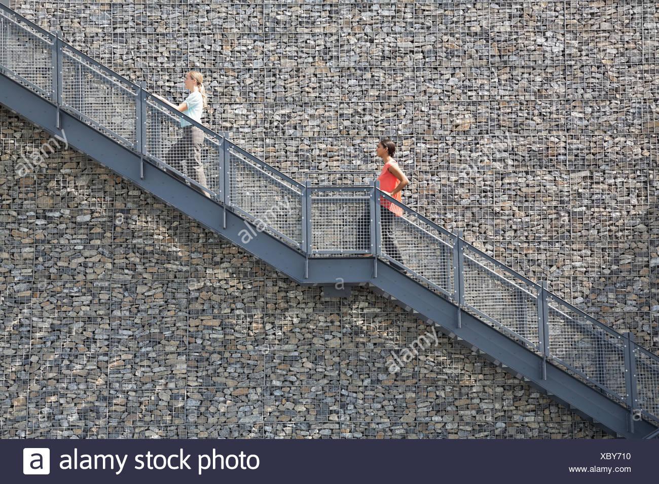 Vista lateral de la escalera de escalada de empresarias Imagen De Stock
