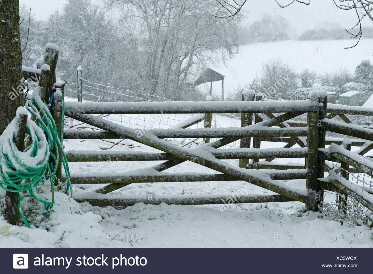 Puerta de campo y una manguera para el suministro de agua para el ganado en una tormenta de nieve fuerte, Devon, Imagen De Stock