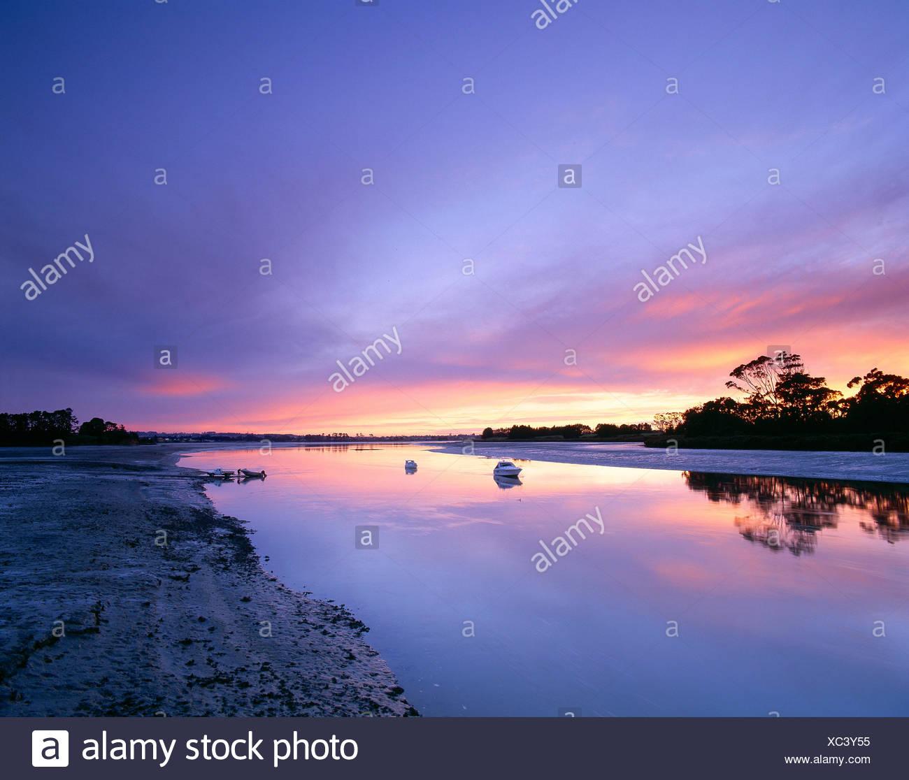 Nueva Zelanda. manukau harbour. bottletop Bay al amanecer. Foto de stock