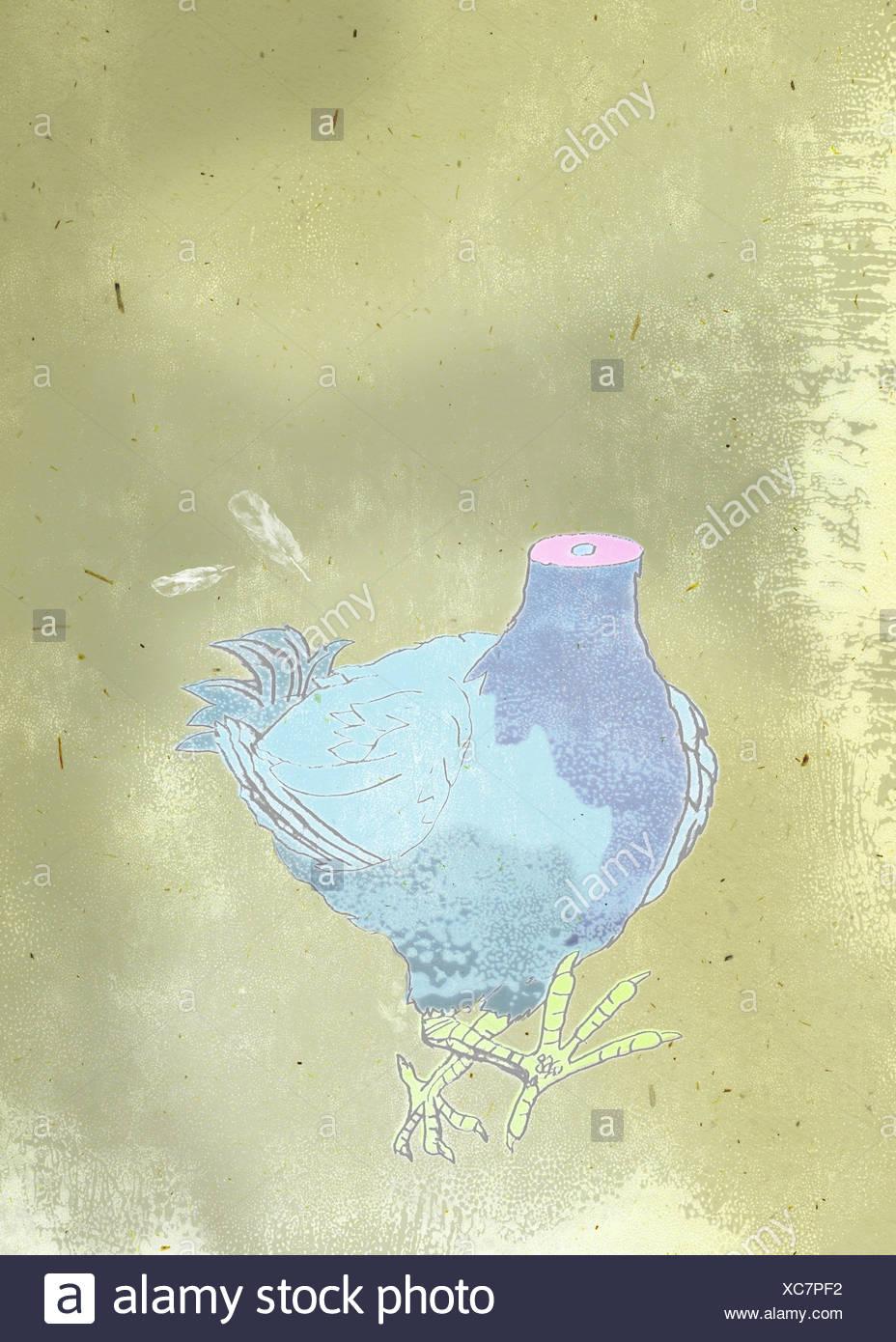 Pollo Imagen De Stock