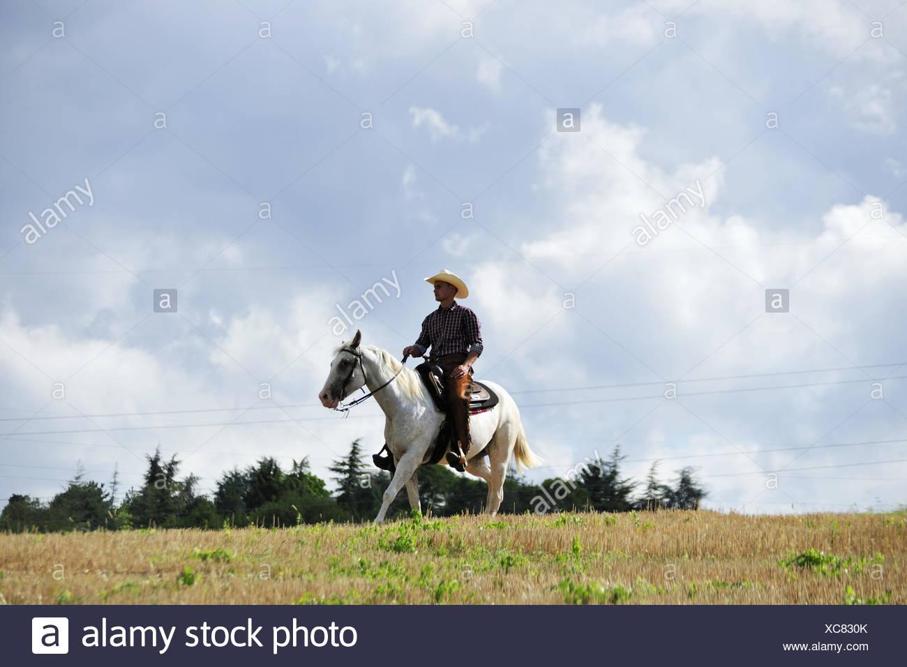 Vaquero joven en marcha al trote a caballo en el campo Imagen De Stock