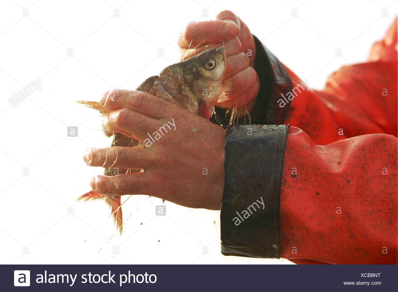 Un Kuestenfischer fuera inútil incidental Foto de stock