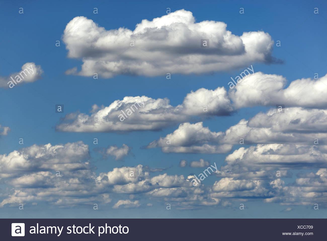 El tiempo justo de las nubes, agrupaciones nubosas, Cúmulos humilis, Alemania Imagen De Stock