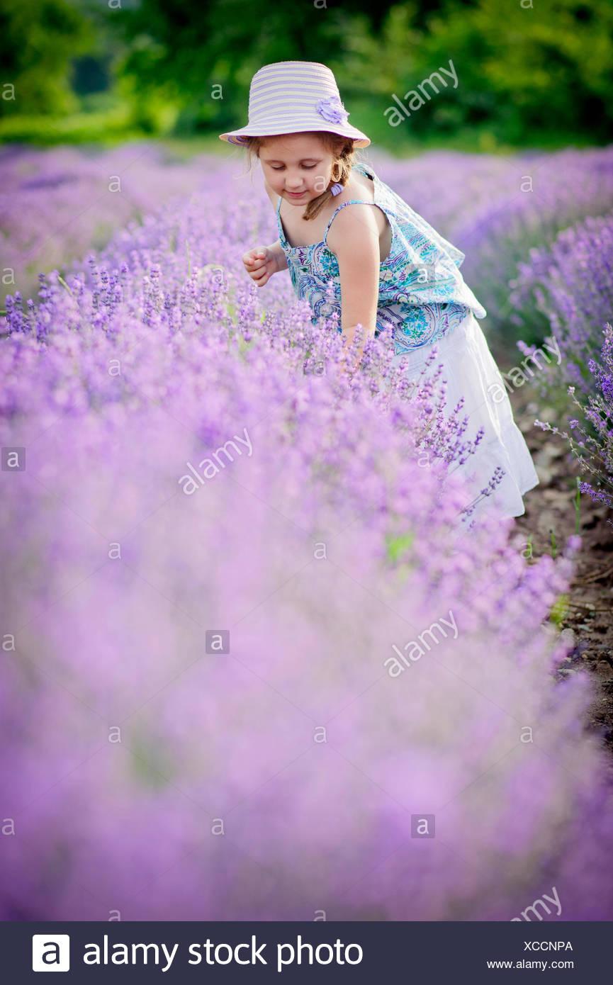 Niña pequeña (4-5) en el campo de lavanda Imagen De Stock