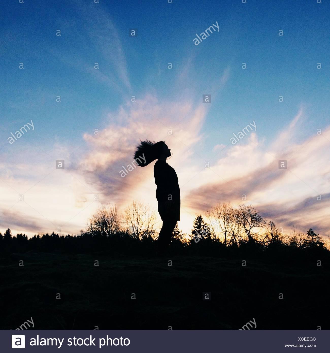 Silueta de cabello salvaje. El cabello de la chica volando, esbozado por la exquisita puesta de sol Imagen De Stock