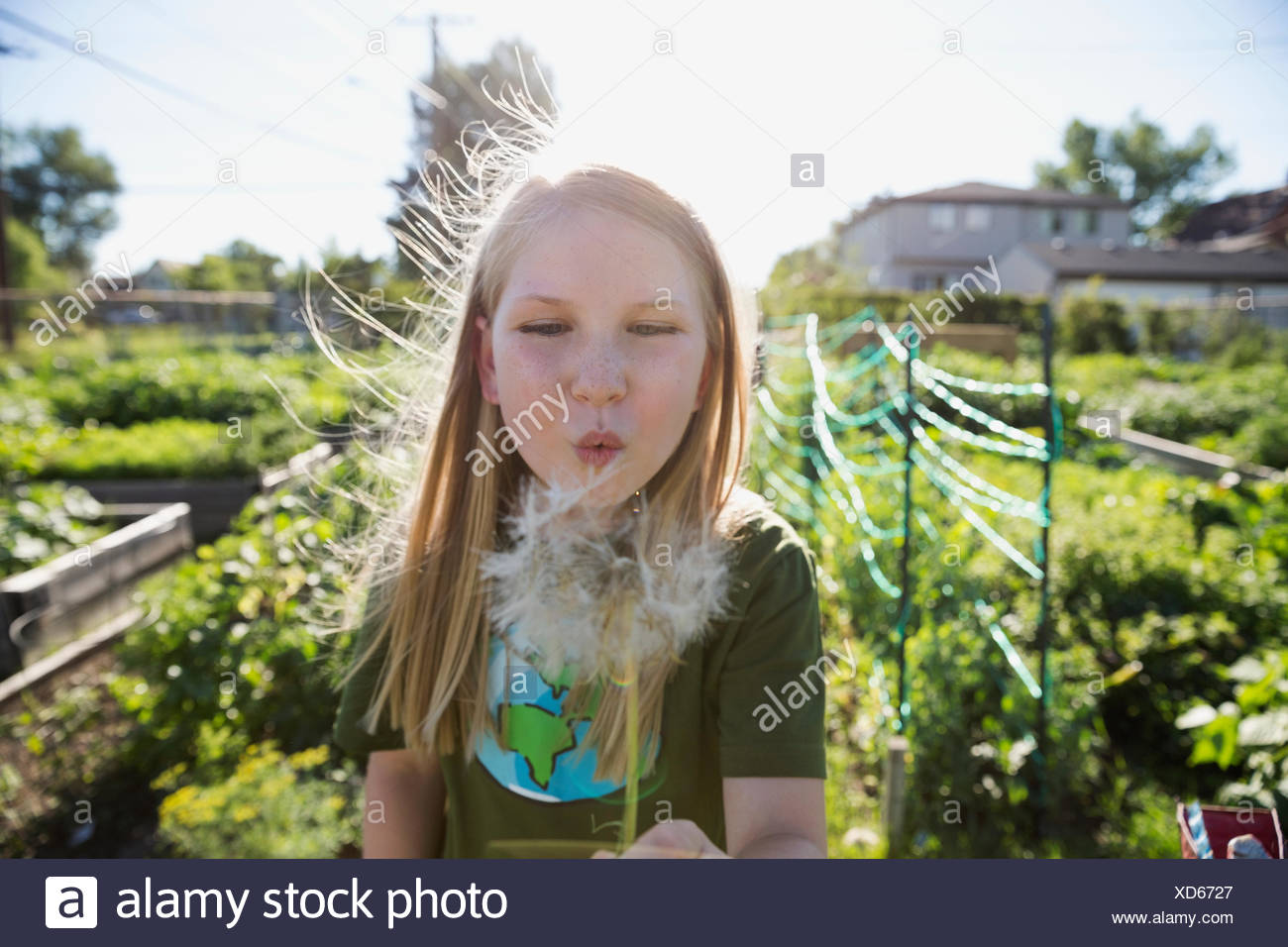 Niña soplando el diente de león en el soleado jardín Imagen De Stock