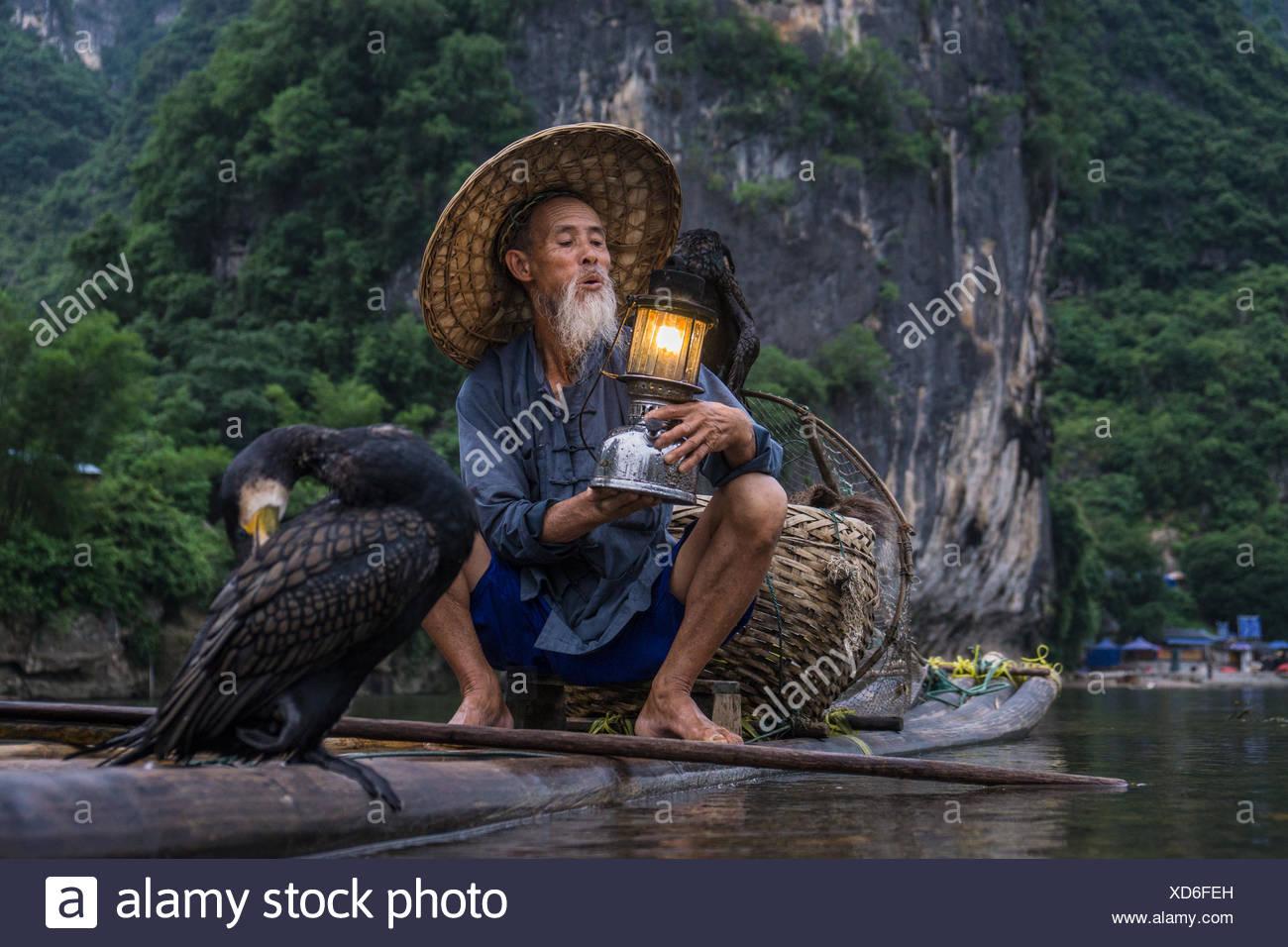 Cormorán pescador en una balsa sosteniendo una linterna, Guilin, China Imagen De Stock