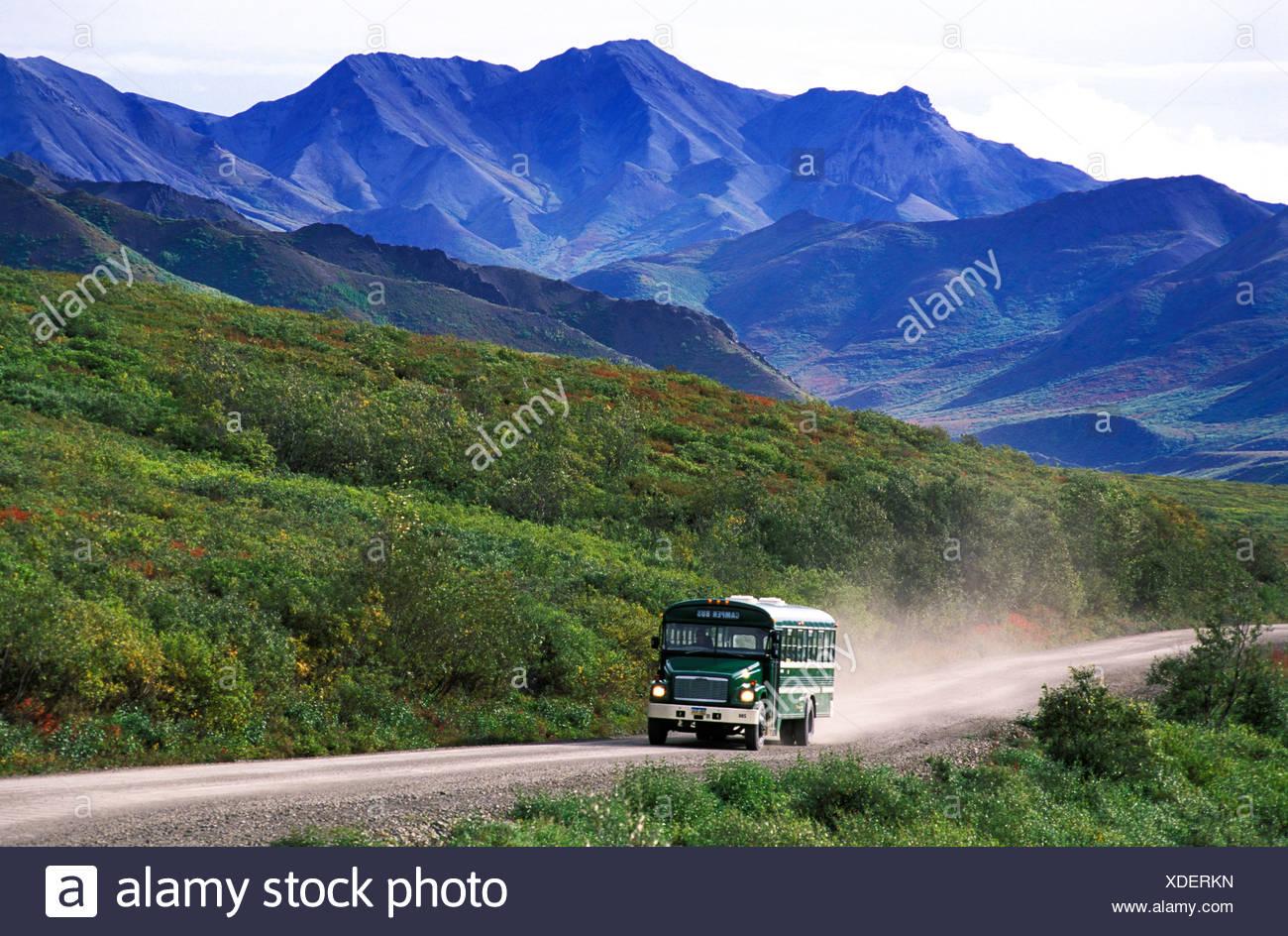 Los autobuses lanzadera, Kantishna Road, Denali, Parque Nacional, preservar, Alaska, EE.UU., bus, montañas, soleado, vacaciones, aventura, la exuberante Imagen De Stock
