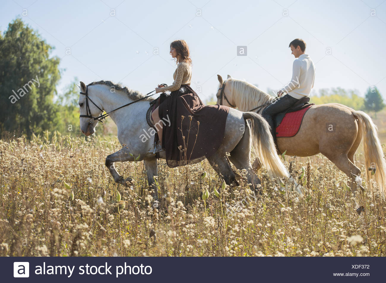 Couple Horse Riding Fotos E Imagenes De Stock Alamy