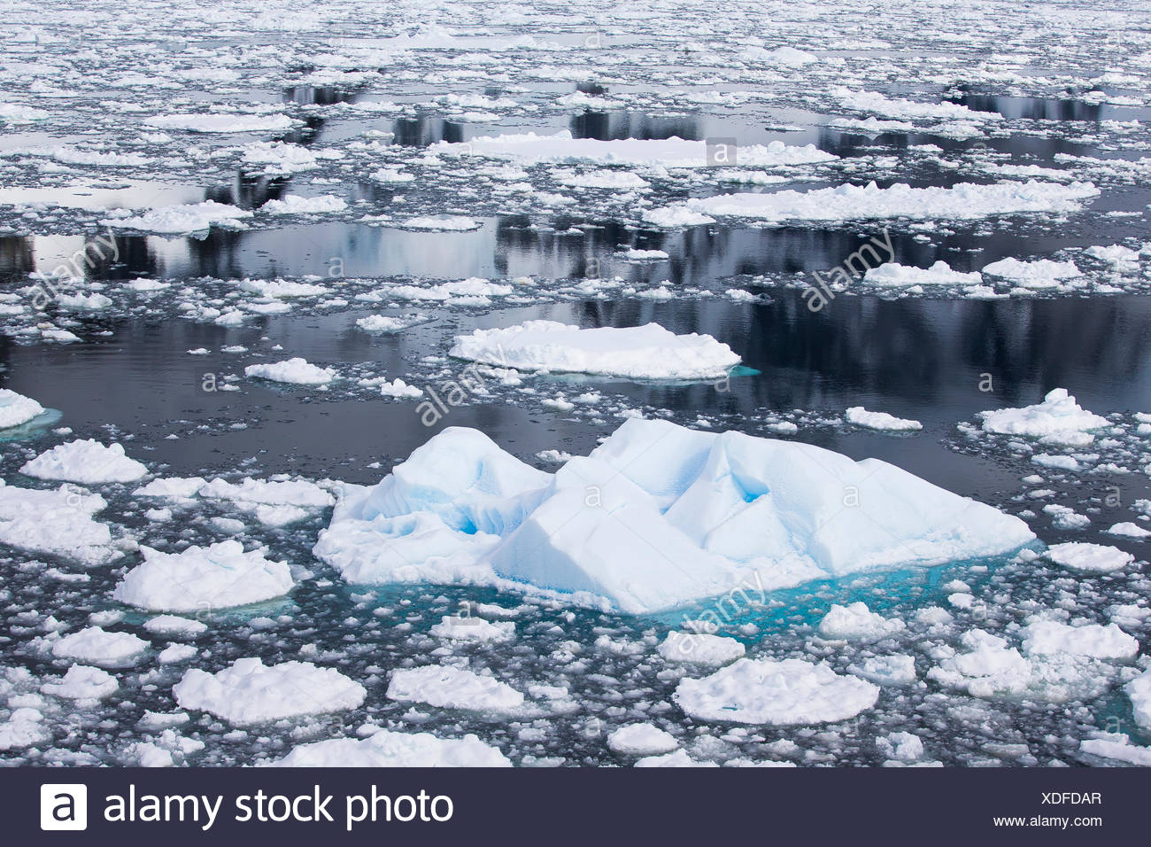 El mar de hielo y reflexiones sobre el agua en la Antártida. Imagen De Stock