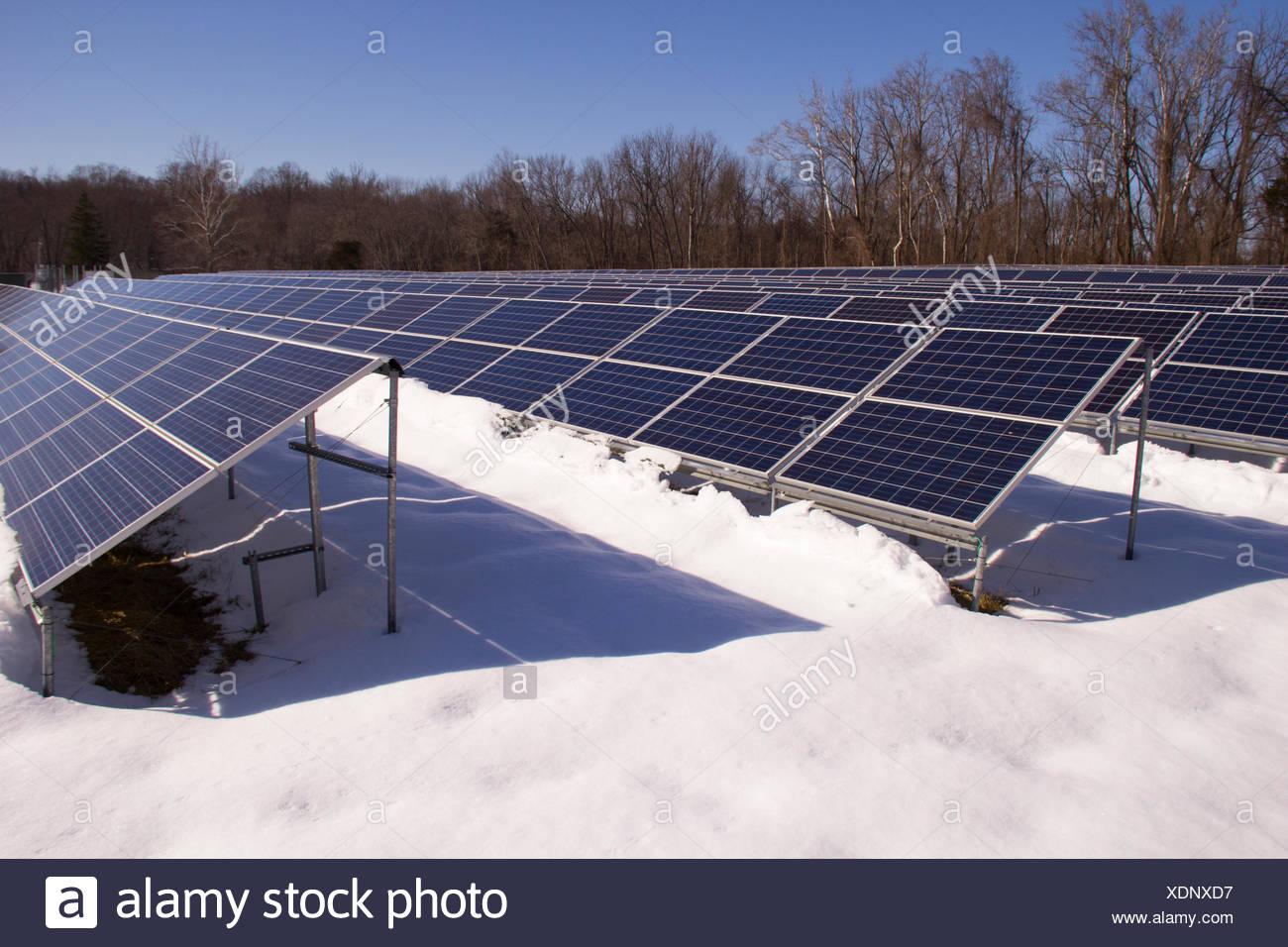 Un campo de paneles solares en un día de invierno. Imagen De Stock