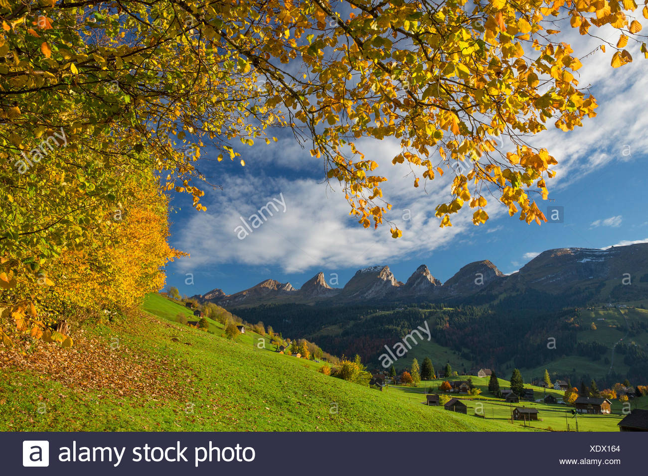 Toggenburg, Unterwasser, SG Churfirsten, montaña, montañas, otoño, la reflexión, la SG, en el cantón de San Gallen, Suiza, Europa Foto de stock