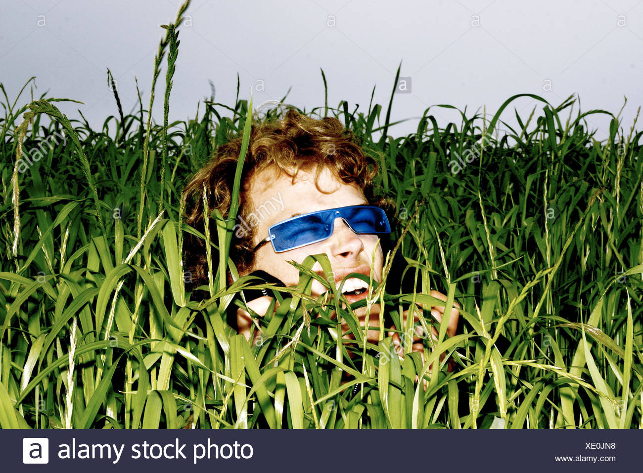7127c3e2a9 Prado, hierba, hombre, joven, gafas de sol, de alto nivel de opiniones,  retrato, retrato del hombre, ...
