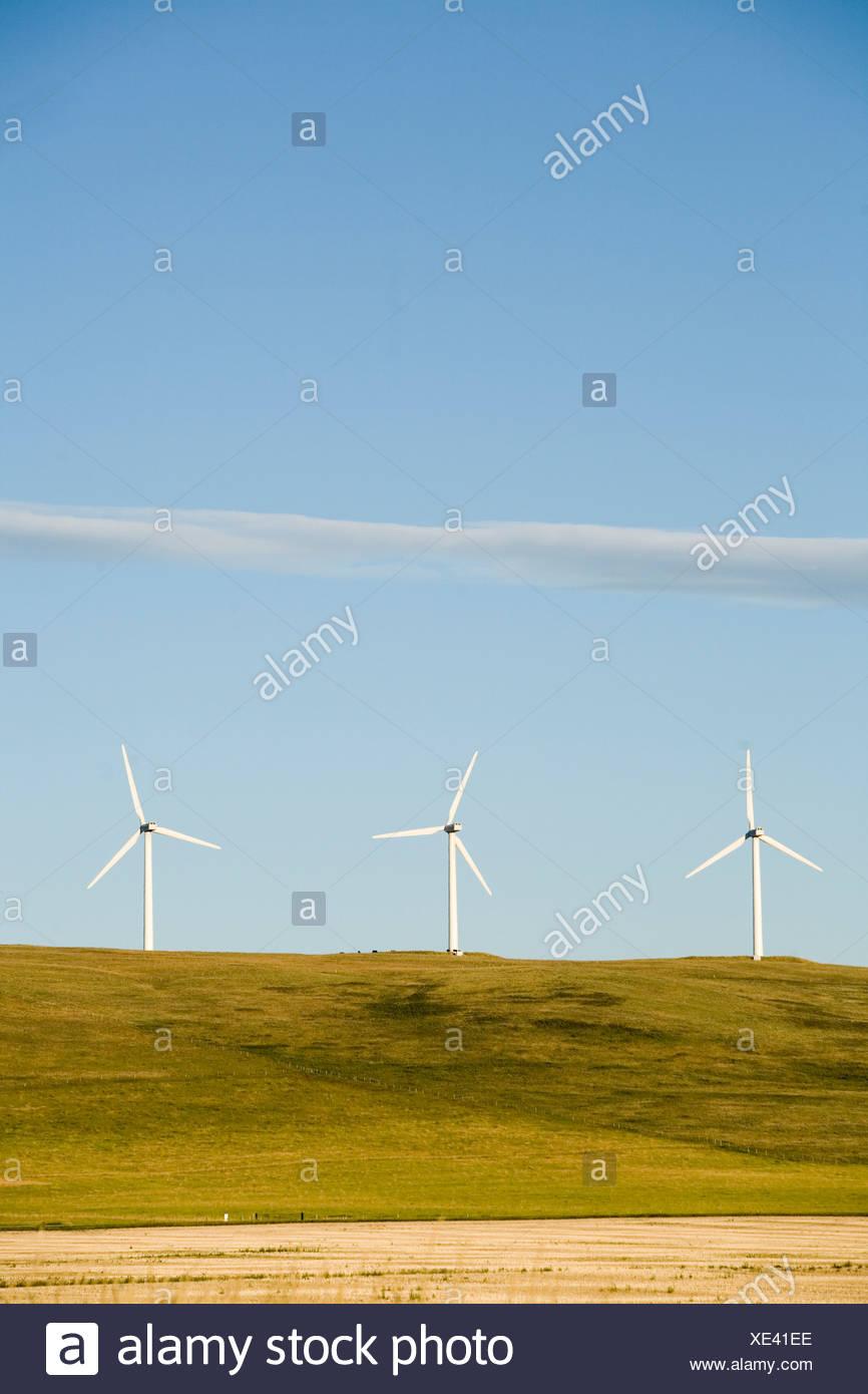 Una fila de aerogeneradores de energía limpia en Montana. Imagen De Stock