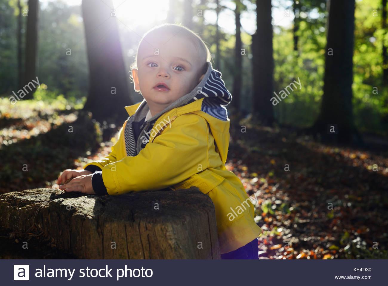 Retrato de niño varón inclinada contra tocón de árbol Foto de stock