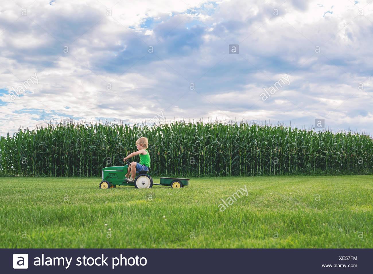 Chico pasando por campo de maíz en un tractor de juguete Imagen De Stock