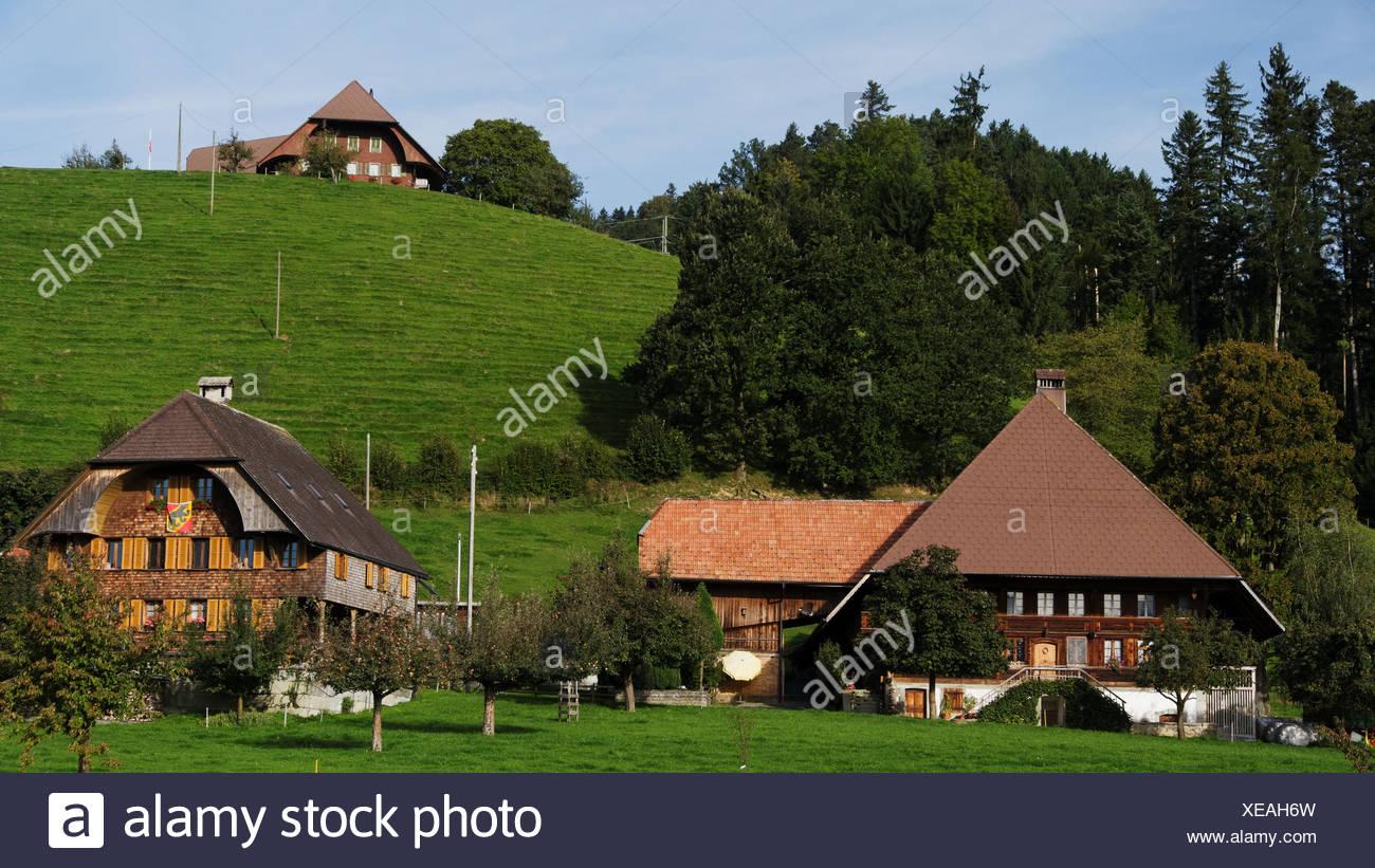 Apple tree, granja, granja de madera, la colina de montaña, techo, Emmental, casa, casa, chalet, corte, patio, Hofstatt, colina, cantón Foto de stock