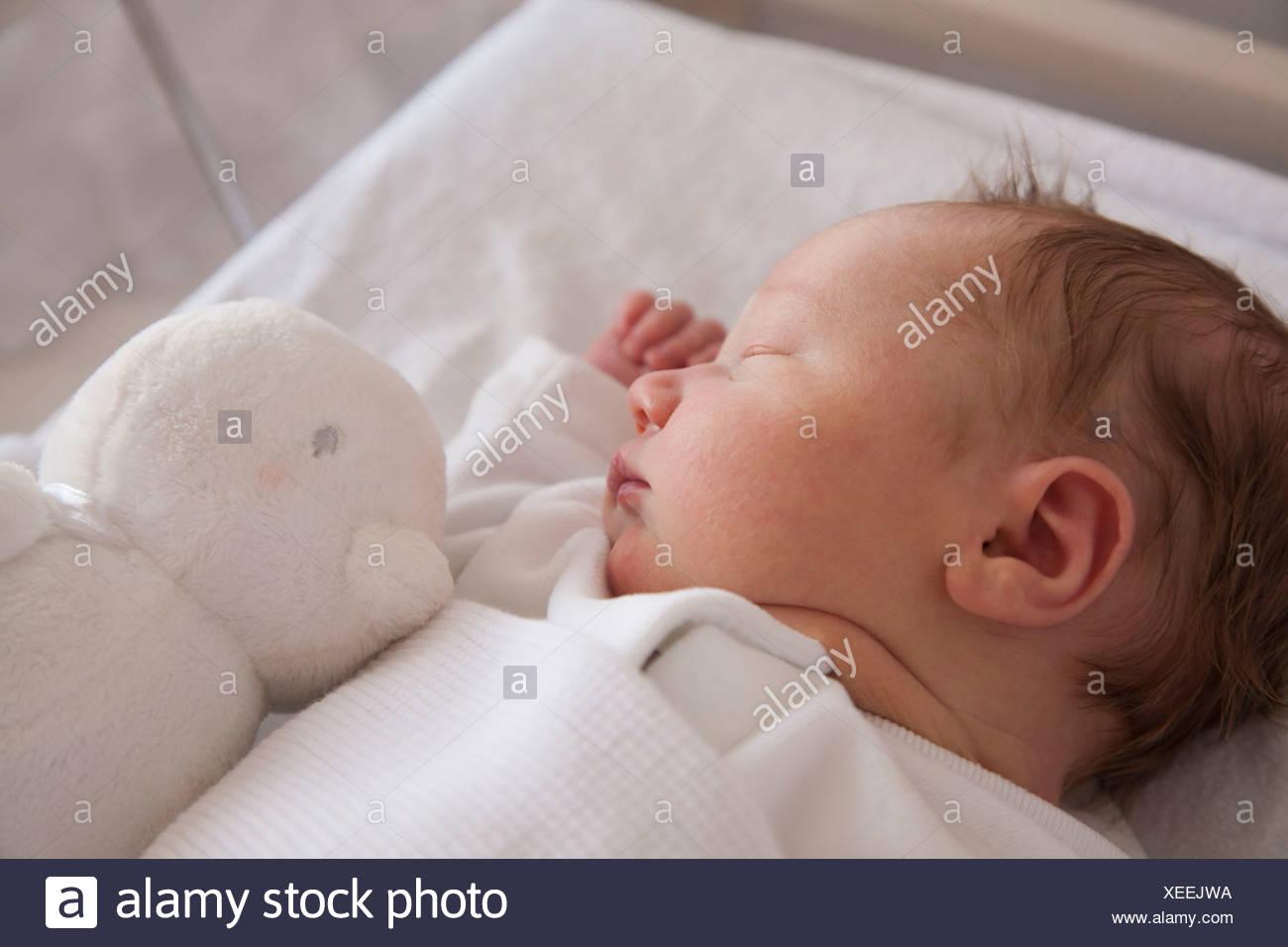 Un bebé recién nacido acostado sobre la espalda, durmiendo. Un juguete en su cuna. Foto de stock