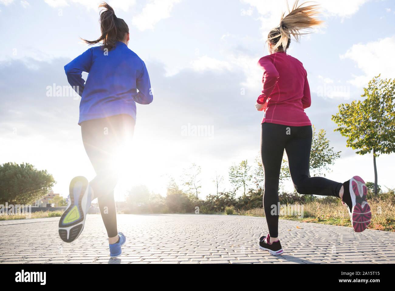 Vue arrière de la femme en marche ensemble dans un parc, contre le soleil du matin Banque D'Images