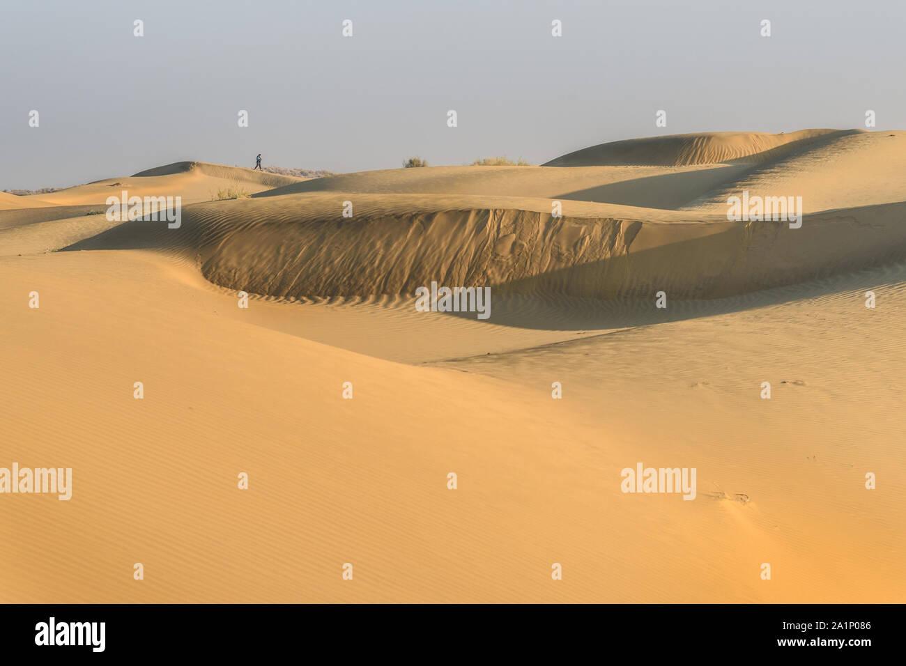 Dunes de sable dans le désert du Thar. Jaisalmer. Le Rajasthan en Inde Banque D'Images