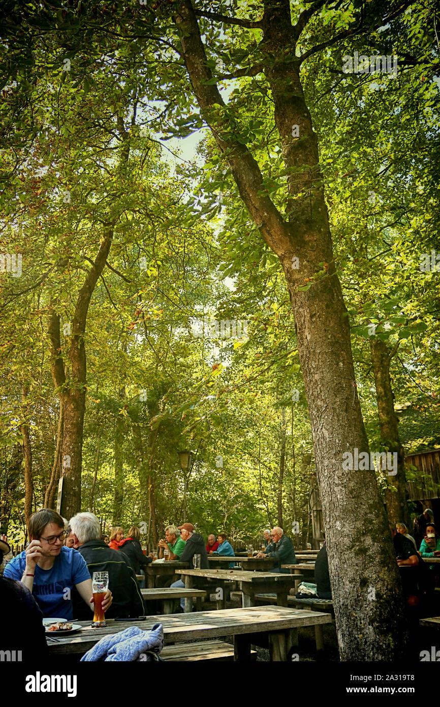 GARCHING, ALLEMAGNE - jardin bavarois typique: open air de saison, le restaurant de spécialités locales sous haute horse-chestnut tree Banque D'Images