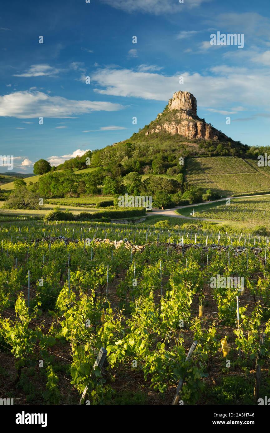 La roche de Solutré, Solutré-Pouilly, Bourgogne, France Banque D'Images