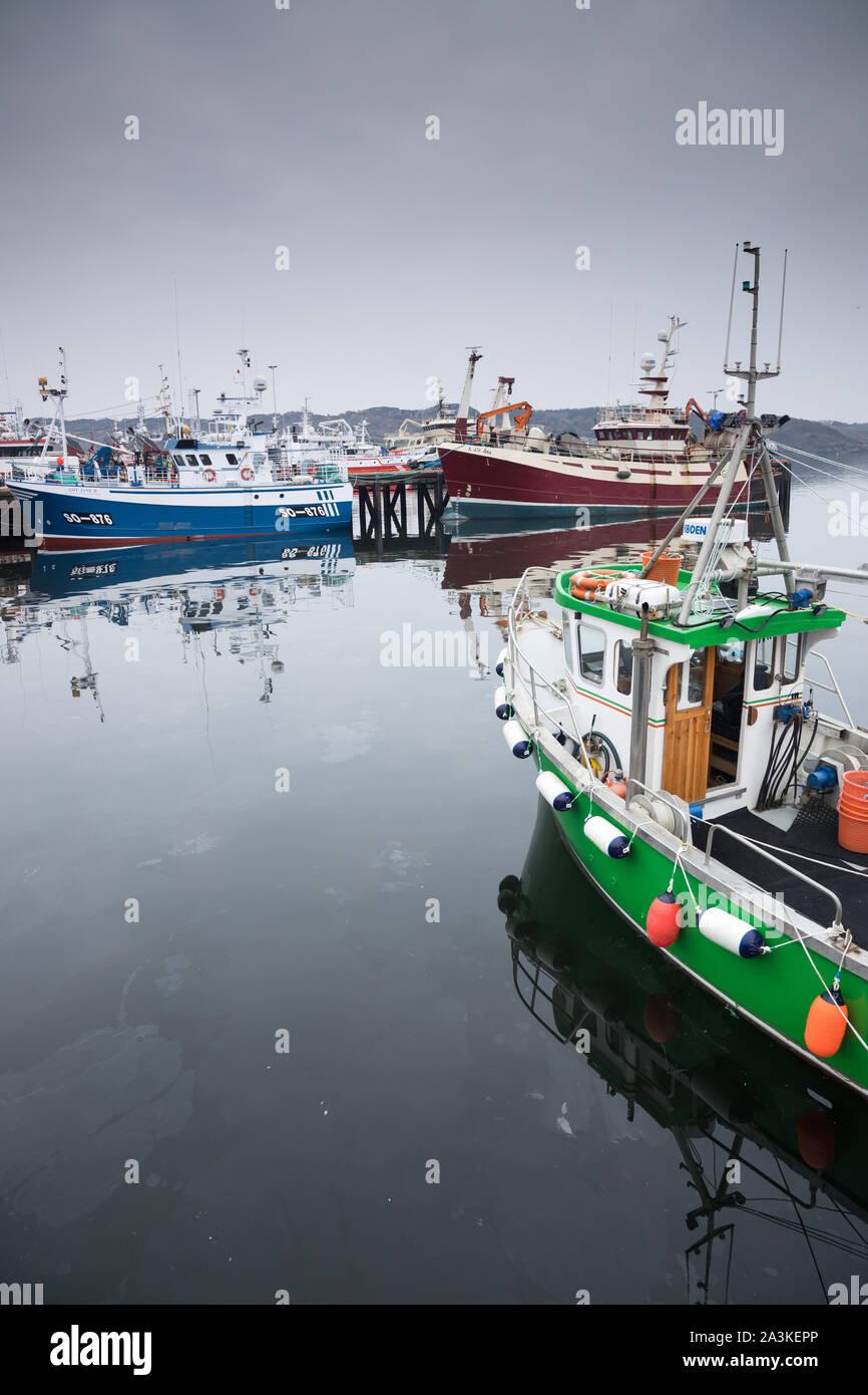 Les bateaux de pêche amarrés à Killybegs, Co Donegal, Irlande Banque D'Images
