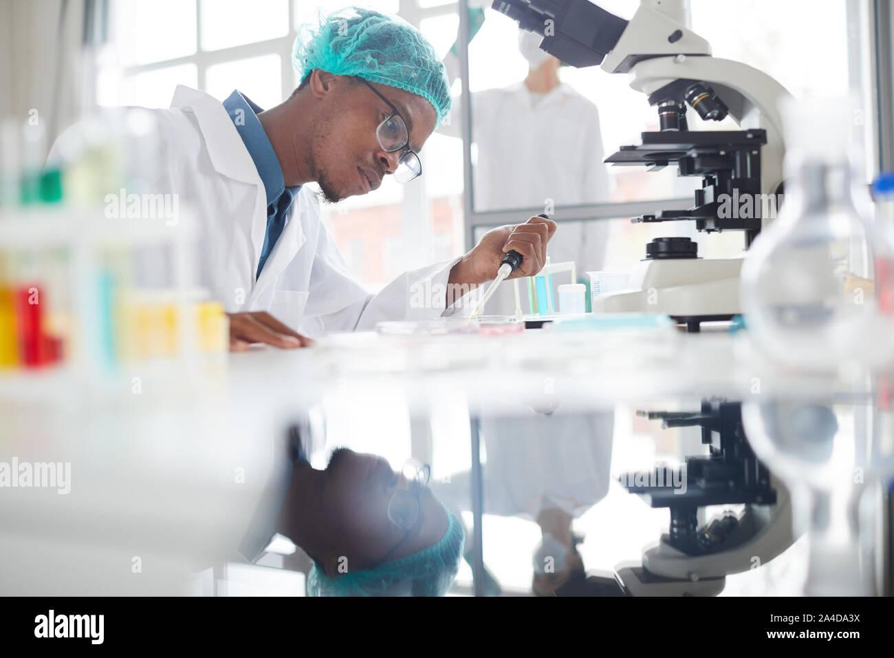 Vue de côté portrait de l'homme afro-américain travaillant dans la préparation d'échantillons de laboratoire de test dans la boîte de Pétri pour la recherche médicale, copy space Banque D'Images